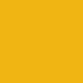RAL 1004 Golden Yellow